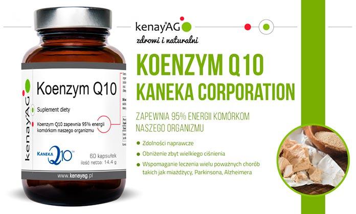 Koenzmym Q10